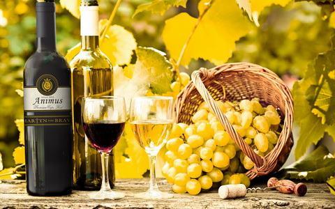 Rượu vang thâm nhập văn hóa ẩm thực Việt